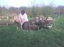 2008-04-23 - Graben der Fundamente