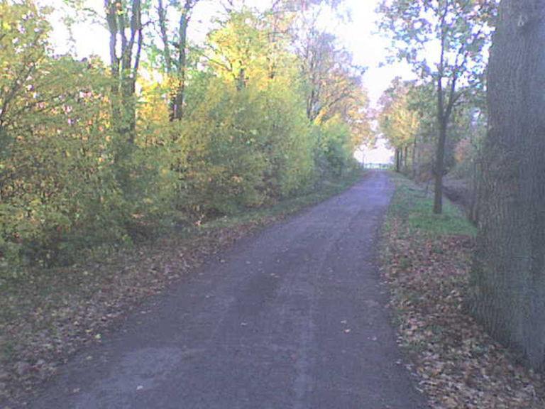 Herbststr